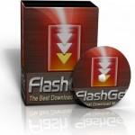 Менеджер закачек FlashGet